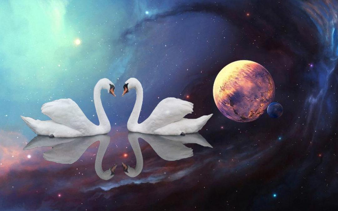 Svaha: In Stillness We Meet