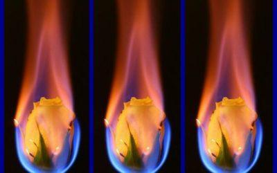 A Soul Fire